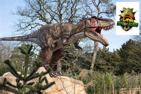Land Of The Dinosaurs chipper club competitions win tickets to see dinosaurs on safari birmingham mail