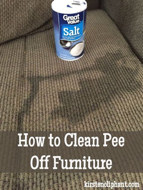 how to clean pee off a couch 1000 ideas about pee stains on pinterest clean mattress