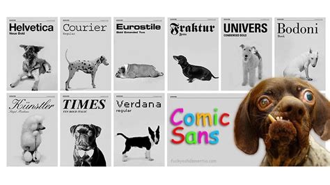 Doge Meme Font - dog meme comic sans image memes at relatably com