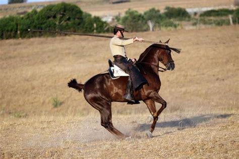 fotos de vaqueros a caballo vaqueros en el co related keywords vaqueros en el
