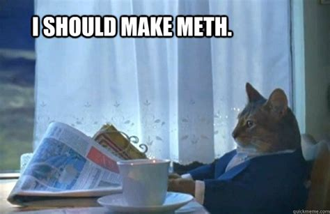 Cat Meme I Should Buy A Boat - i should make meth sophisticated cat quickmeme