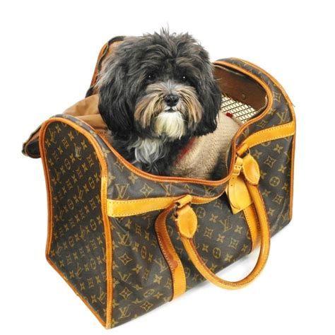 yorkie beds and carriers 17 best images about things for my furbabies on louis vuitton i