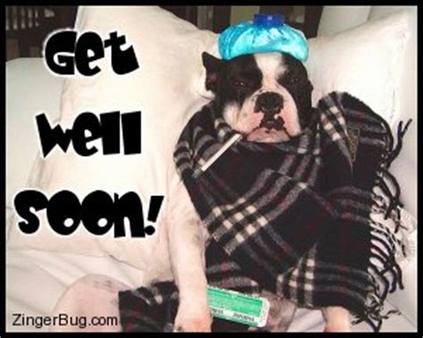 Get Well Soon Meme Funny - get well soon glitter graphics comments gifs memes and