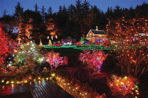 christmas illumination or christmas light 10 gardens that glitter with lights garden destinations magazine