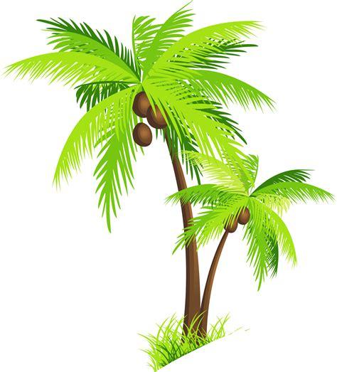 alberi clipart coconut tree png clipart piante alberi