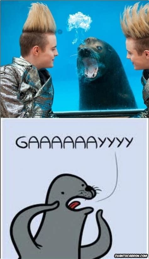 Gaaaaay Meme - memedroid images tagged as gayyyyyyyyyy page 1