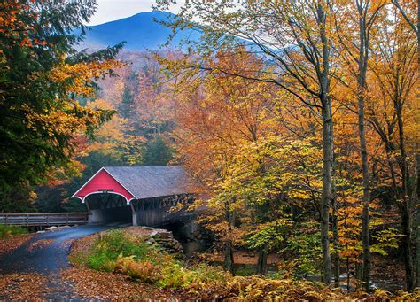 Phone Lookup Nh Essence Of New New Hshire Autumn Classic Photograph By Schoeller