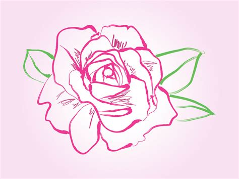 vector rose tutorial rose drawing vector