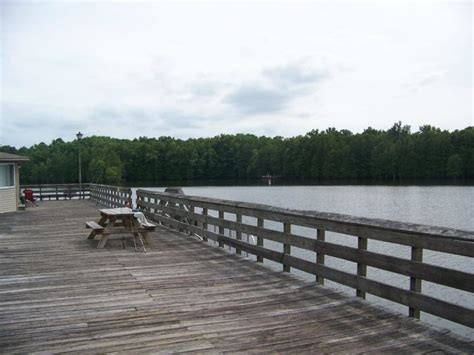 pontoon rentals santee sc wake up over the water in these cabins over the lake at
