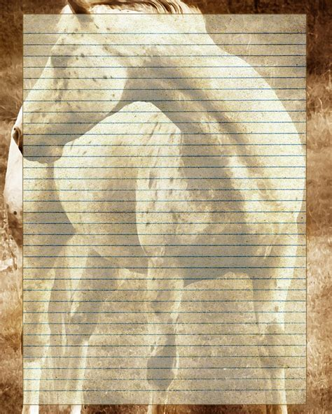lined paper with horse border printable horse journal page animal stationery horse lined