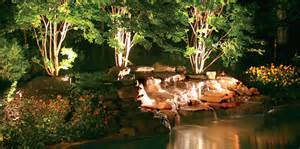 how to light your tree tree lighting experts san antonio tx outdoor lighting