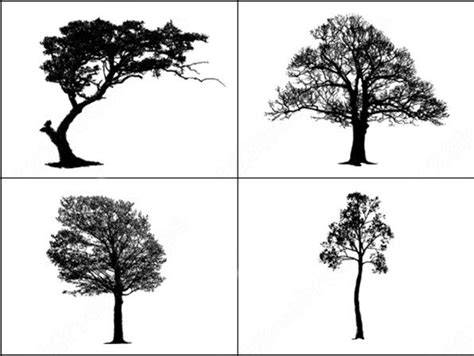 tree pattern brush sle file from tree master vector and photoshop brush