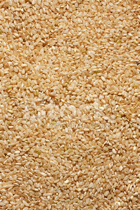 brown rice pattern brown rice background stock photos freeimages com