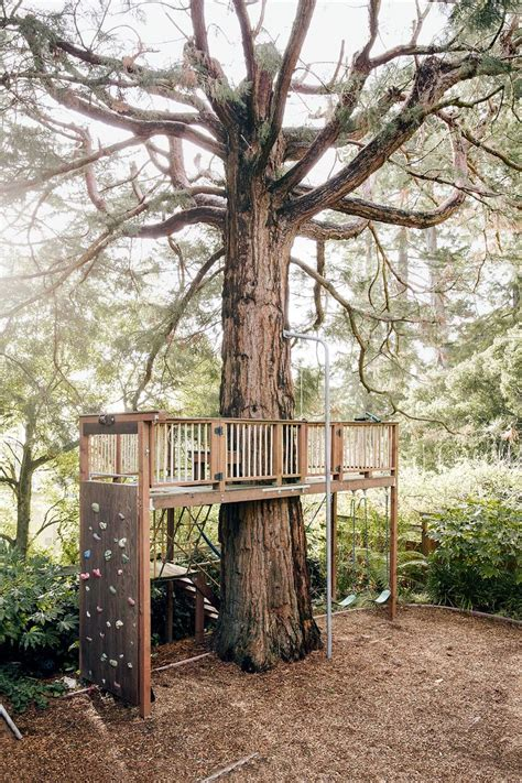 want to make a treehouse the garden glove 486 best images about tree houses and forts on pinterest