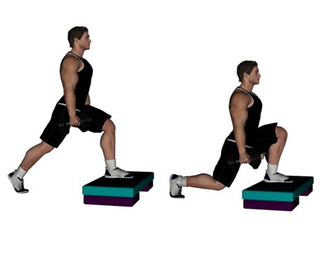 dumbbell bench lunges top ten best exercises every master should be doing the