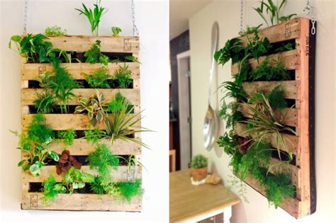 indoor vertical garden   grow