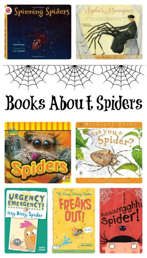 the of the spider books spider books for fantastic learning
