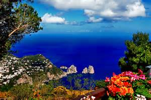 Cool Cat Trees Island Of Capri Nature Mediterranean Italy Ribp