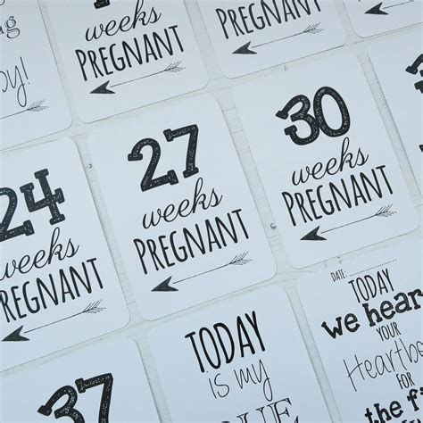 Milestone Pregnancy Photo Cards classic pregnancy milestone cards by eleanor designs