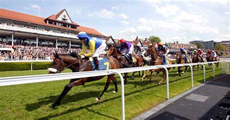 fancy a summer at chester racecourse they are looking for staff for the 2017 season
