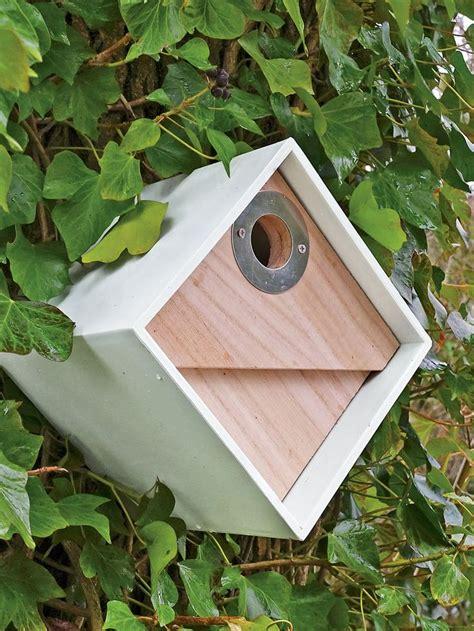 cool bird houses designs best 25 bird boxes ideas on pinterest