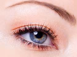grijze oogschaduw makeup bij blauwe ogen voorbeelden rubriek