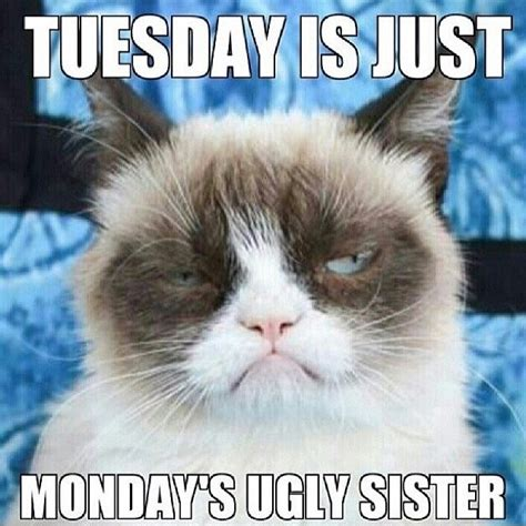 Monday Meme Funny - tuesday is just mondays ugly sister funny meme monday