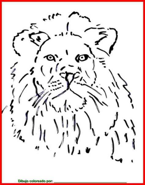 imagenes de leones para imprimir free pradera animales coloring pages