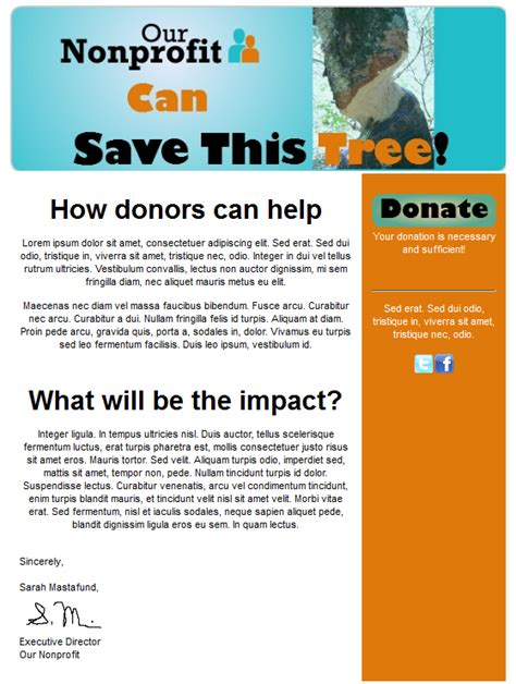 Donor Newsletter Template Donor Newsletter Template Templates Station