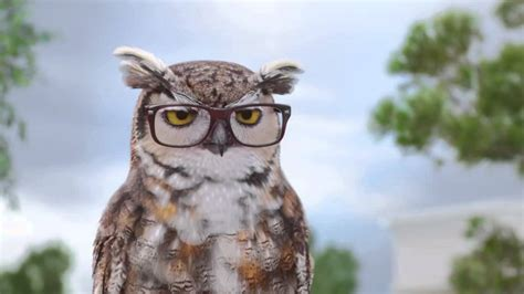 who voices the owl in americas best commercial does burt reynolds do the voice of the owl in america s