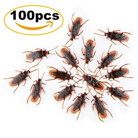 best cockroach best cockroaches products