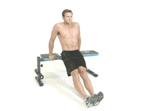 single bench dip seated bench dips benches