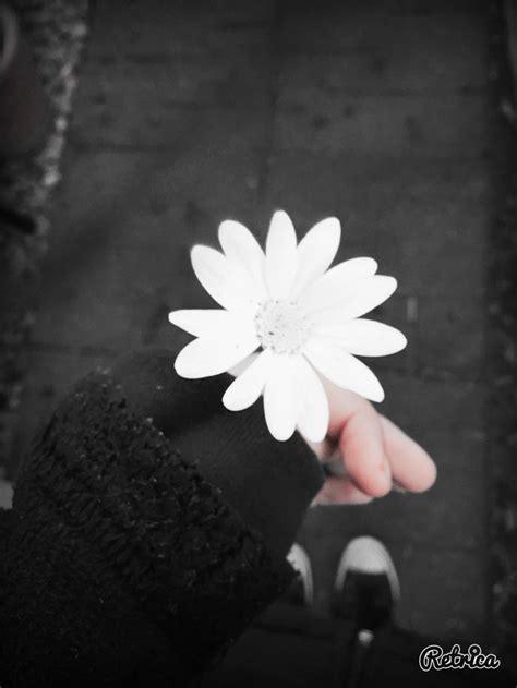 aesthetic white aesthetic black and white flower girl goth image