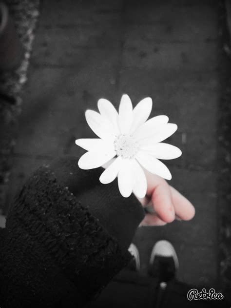 black and white aesthetic aesthetic black and white flower girl goth image