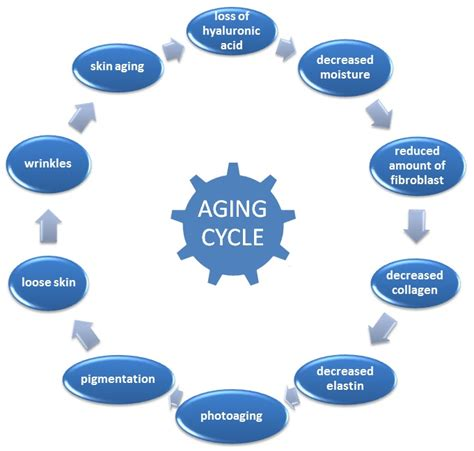 Laptops The New Cause Of Skin Aging by Faq Support