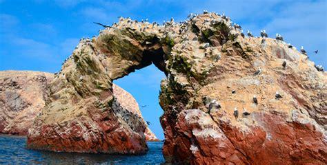 en la reserva nacional de paracas se inicia la temporada de verano y reserva nacional de paracas 193 rea natural del per 250