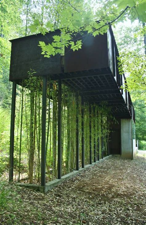 modern tree house designs best 25 holiday rentals ideas on pinterest modern