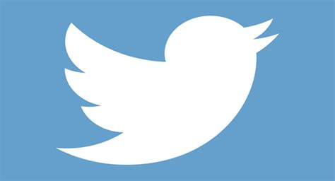 white twitter bird logo white twitter bird logo pictures to pin on pinterest