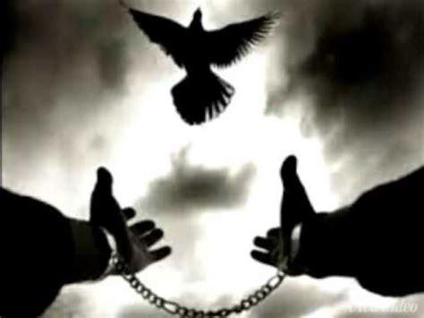 imagenes de ser libres la academia del sabor quiero ser libre vol1 youtube