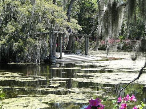 Wilmington Nc Botanical Gardens 59 Best Azalea Festival Garden Images On Pinterest