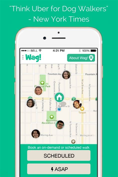 wag walking app 19 best wag pups images on walking pup and puppies