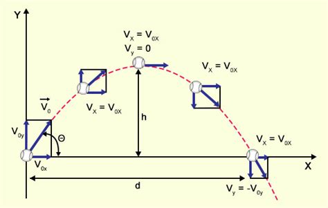 projectile motion diagram a guide to understand projectile motion with real