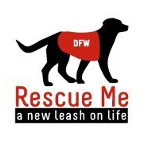shelters in maine dfw rescue me dfwrescueme