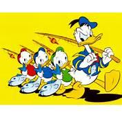 Cartoons Donald Duck
