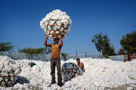 mehr nachhaltige baumwolle braucht die welt lebenskonzepte