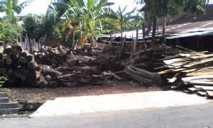 Dipan Kayu Akasia jualkayu akasia mbarepjati 0813 9325 2858