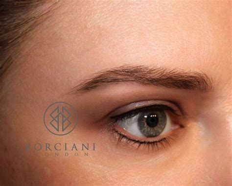 brown tattoo eyeliner 30 best images about permanent makeup on pinterest semi