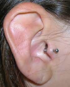 tragus ear piercing everything you need to