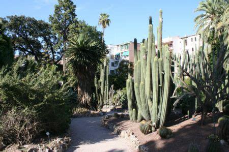 giardino botanico valencia jardin botanico 187 valencia 187 spagna giardini mondo