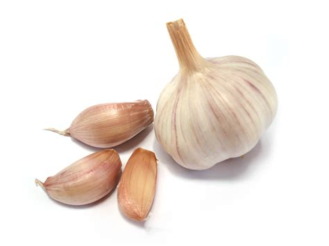 home remedies for ear infections garlic colloidal